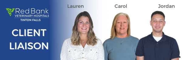 Our New Client Liaison Team Is At Your Service!